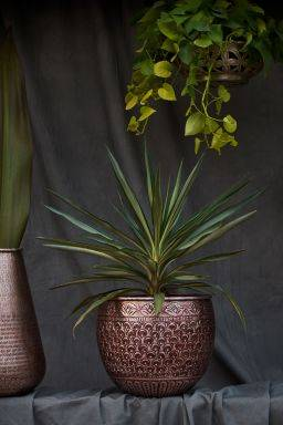 Qajar Copper Finish Planter