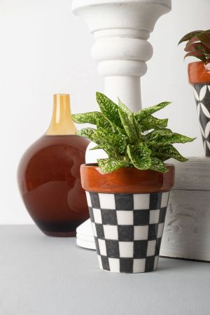 Chequered Planter
